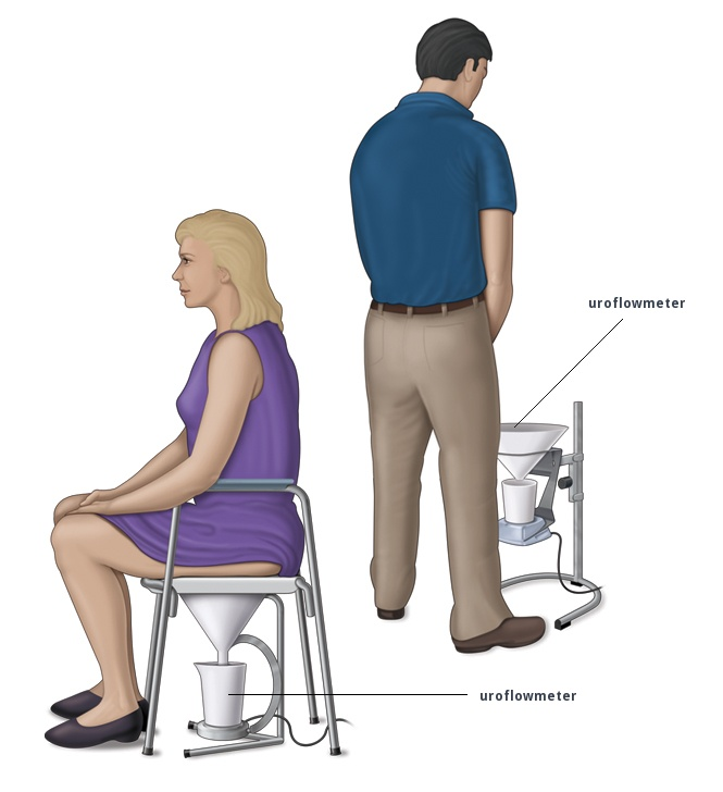 [Image: uroflowmeter-britannia-english-medical-d...logist.jpg]